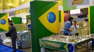 De Pero Vaz de Caminha à nova Seap, como o Brasil tratou a competitividade do pescado lá fora