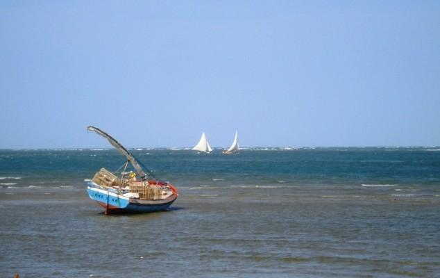 MPA inicia instalação gratuita de rastreador em embarcações de pesca de lagosta