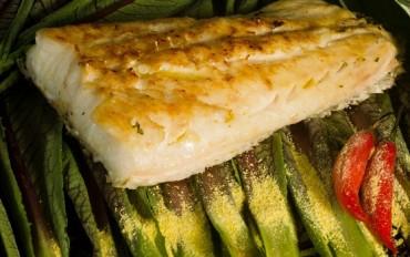 Dica gastronômica: Festival de Peixes da Amazônia no Rio de Janeiro