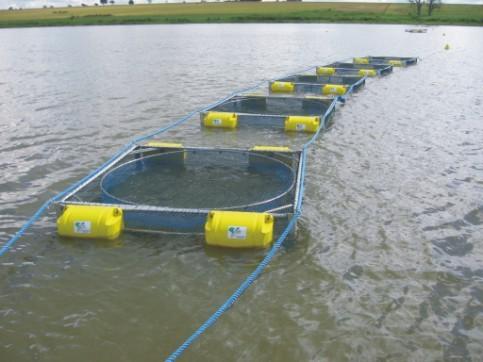 Equipamento monitora índices físicos químicos de tanques rede