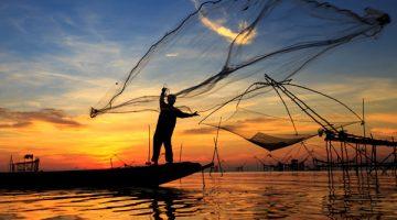 Pesquisa identifica espécies de peixe usadas como iscas vivas no Pantanal