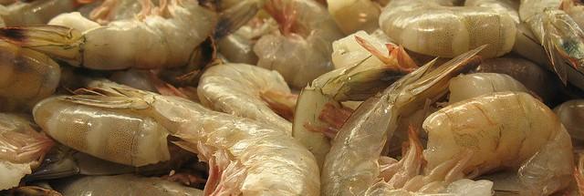 Cai liminar que proibia camarão equatoriano; ABCC: Não iremos aceitar
