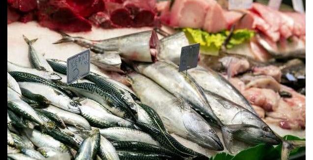Governo fiscaliza pescados em 13 estados