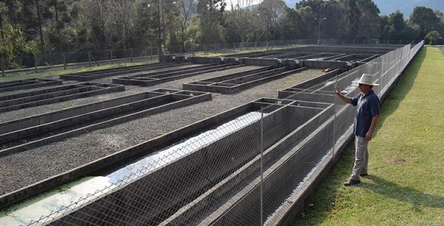 Governo do Estado apresenta investimentos para a cadeia produtiva da piscicultura na Serra Catarinense