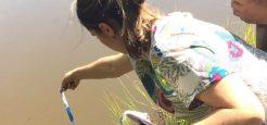 Alunos de Engenharia Agronômica da Uniara finalizam curso voltado à piscicultura