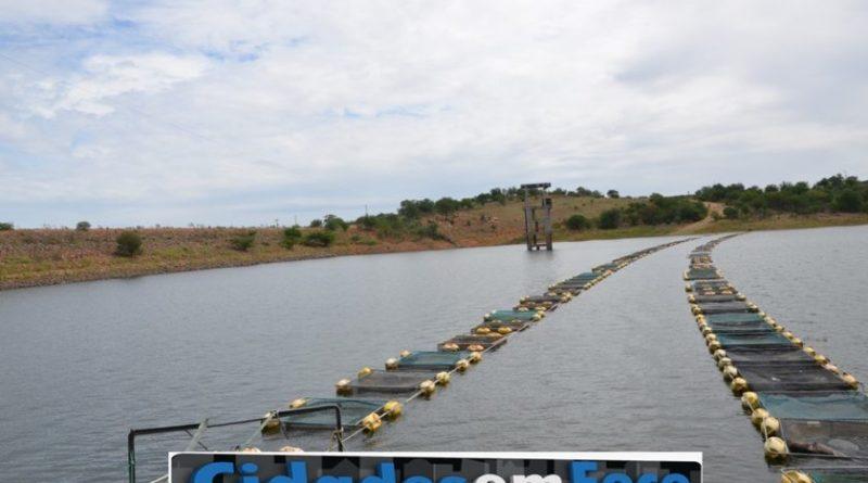 Parceria entre colônia de pescadores e SDR distribui mil quilos de peixes em Conceição do Canindé