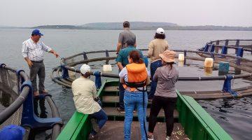 Pesquisadora destaca potencialidades do atual cenário da piscicultura em Mato Grosso