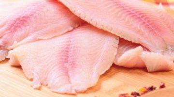 Produção mundial de pescado vai fechar o ano 2,3% maior, tilápia segue firme