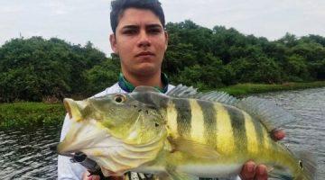Especialistas veem ameaça a peixes do Pantanal com expansão do tucunaré