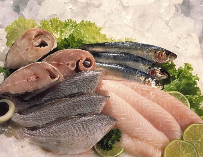 Pesquisa aponta mercado de peixes de Fortaleza como referência
