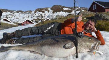 Alemão Michael Eisele posa com peixe cod de 47 kg e 1,60 metro (Foto: Soroya Havfiskesenter/NTB Scanpix/Reuters)