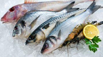 Peixes exigem cuidados na hora da compra; veja dicas para acertar na escolha