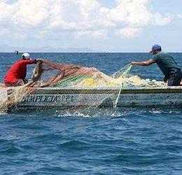 Engenheiro de pesca contribui para aumento na produção de pescado