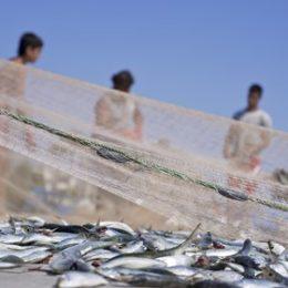 Petrobras terá que pagar indenização a pescadores em Sergipe