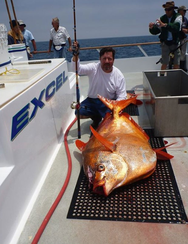 Americano fisga 'peixe esquisito' e bate recorde que durava 16 anos
