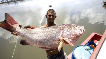 MPA divulga setor pesqueiro na Europa