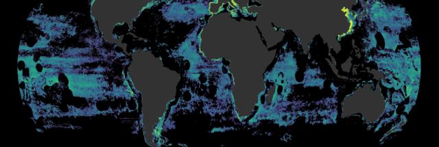 Pesca cobre mais de 55% dos oceanos; impacto é maior onde não há gestão pesqueira