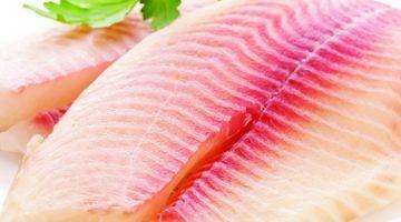 "Startup aposta em carne de peixe para entrar no mercado de ""proteína limpa"""