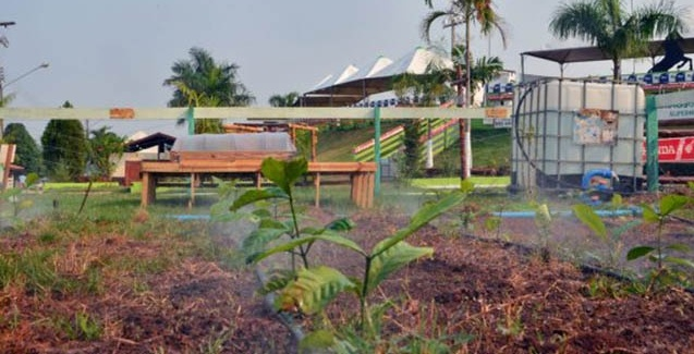 Piscicultura e agricultura são fortalecidas pela qualidade dos recursos hídricos de Rondônia