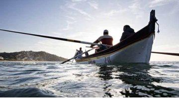 Mapa indefere concessão de pesca da tainha para 50 embarcações