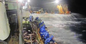 Pesca industrial ganha força no Brasil