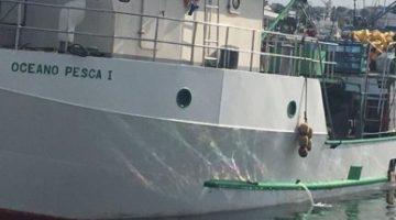 Pesca em foco: Capitania investiga 'guerra do atum'; Iccat tem 'frustração' e Seap publica portaria de cardume associado