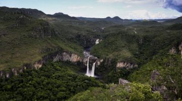 No Dia Mundial do Meio Ambiente, Temer amplia e cria unidades de conservação