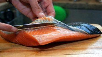 Pesca do salmão é retomada em Naraha, Fukushima, após cinco anos