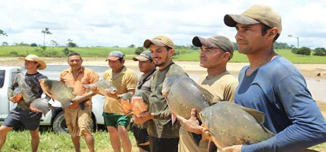 Peixes da Amazônia reaviva esperança de produtor em continuar criando alevinos
